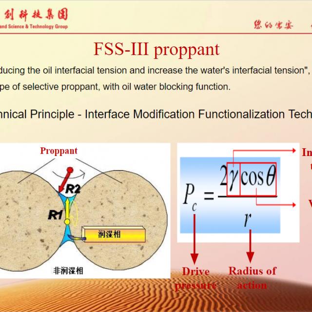 FSS Type III