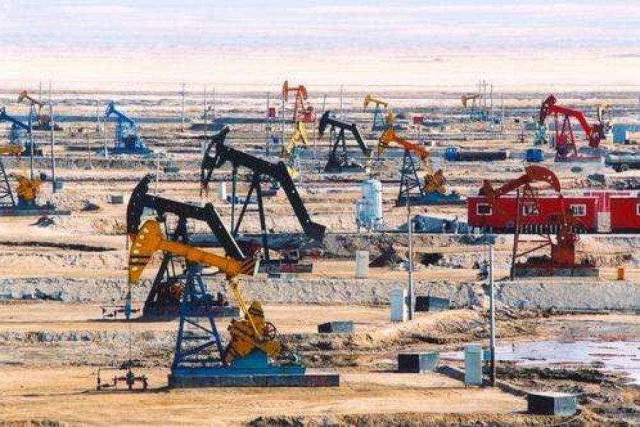 Oil production case